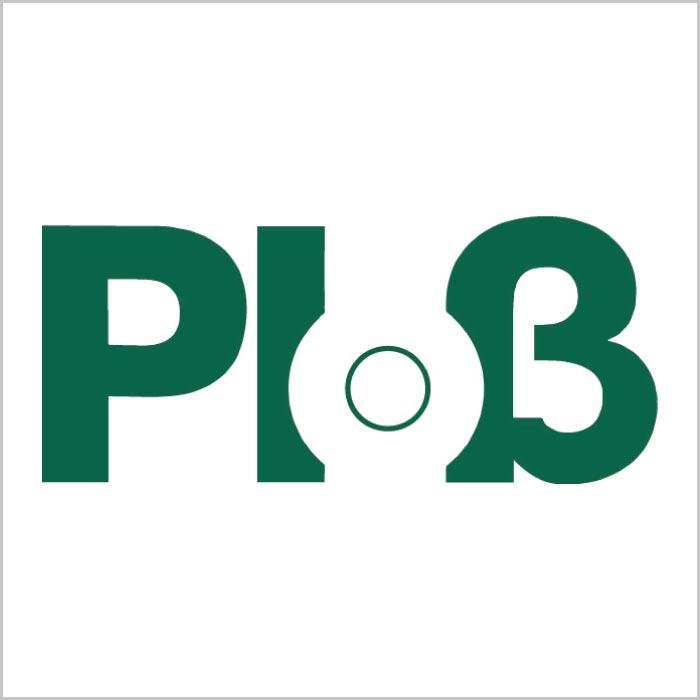Logo Ploß & Co. GmbH