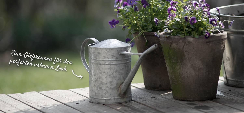 Zinngießkanne auf der Terrasse – HolzLand Verbeek