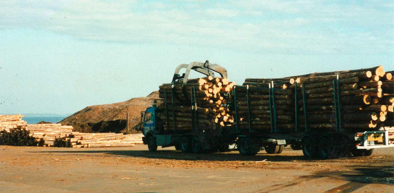 Voll beladener LKW für den Holztransport
